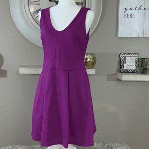 Jennifer Lopez women's purple dress. Size 12